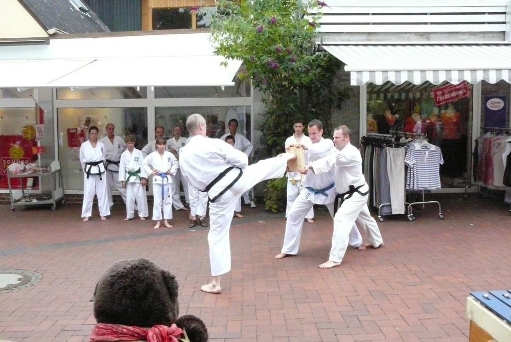 Taekwon-Do (Kinder + Jugendliche ab 10 J.)